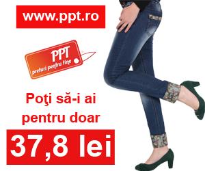 ppt.ro