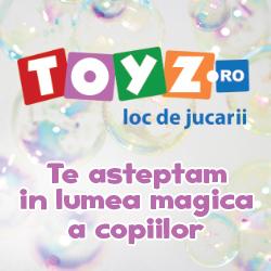 Toyz.ro
