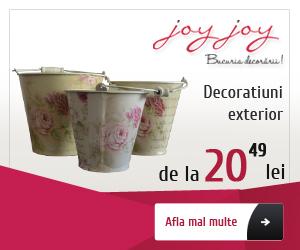 joyjoy.ro