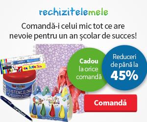 RechiziteleMele
